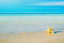 Beautiful Landscape Sea Ocean Beach 24x36 Big print photo SILK POSTER