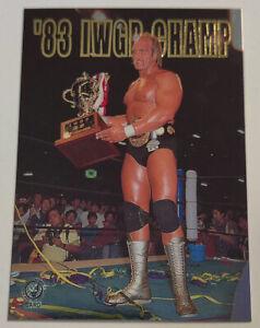 1998 Hulk Hogan Bandai '83 IWGP Champ New Japan Pro Wrestling Card #S01 Japanese