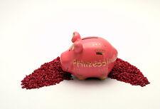 KCG Sparschwein Prinzessin Geschenkverpackung 9 x 12,5 cm / Spardose
