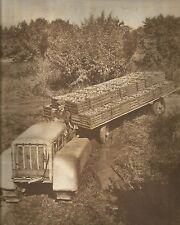 K0437 Trasporto delle mele con trattore e rimorchio - Stampa fotografica antica