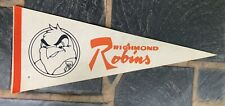 1970s RICHMOND ROBINS AHL HOCKEY TEAM FELT PENNANT, RICHMOND, VA, VINTAGE