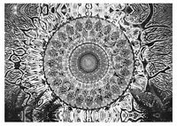 Psychedelic Mandala CANVAS WALL ART PICTURE 20X30 INCHES