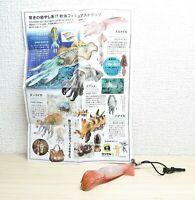 Kaiyodo Capsule Q JAPANESE FLYING SQUID strap figure