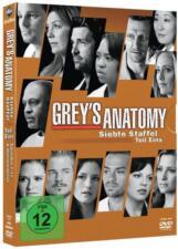 Grey's Anatomy - Staffel 7.1 (2011)