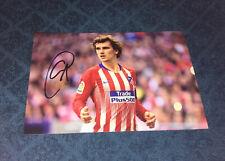 Griezmann Antoine Photo Dedicace Autograph Football France Champions