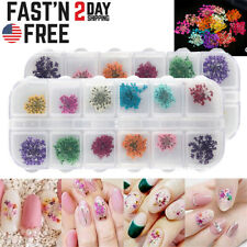 12 Colors Real Dried Flowers 3D Nail Art Decors Design DIY Tips Manicure Box Set