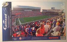 "Florida Gators FATHEAD The Swamp 17"" x 11"" Stadium Mural NCAA Wall Graphics"