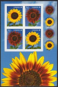 SUNFLOWERS = Block of 4 on FRONT Booklet page w/4 seals Canada 2011 #2443-44 MNH