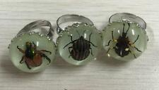 3 pcs insect in resin ring glowing in dark beauty ring NG