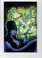 ELVIRA: MISTRESS OF THE DARK #10 - Grade NM - 1 in 10 virgin Variant Cover!