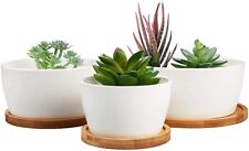 Round Ceramic Plant Pots with Drainage Bamboo Trays, Set of 3