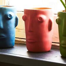 Kitsch Kitchen Pink Cabeza Face Planter