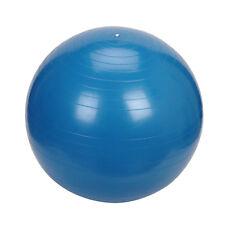 Blue Exercise Yoga Ball w/Pump 75cm
