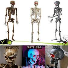 Life Size 5 Ft Pre-Lit Halloween Skeleton Animated Led Eyes Hanging Prop Decor