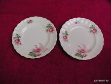 "{SET(s) OF 2} Spode (Dubarry) 6 1/2"" BREAD PLATES Exc Pat #S2391 (5 avail)"