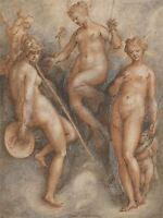 JAN VAN DER STRAET FLEMISH THREE GODDESSES MINERVA JUNO VENUS ART PRINT BB5798A