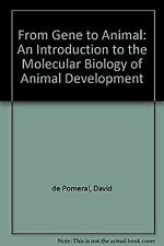 From Gene to Animal : An Introduction to the Molecular Biology of Animal Develop
