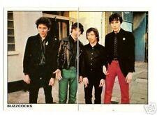 Buzzcocks Vintage Panini Pop Rock Sticker Card Look!s