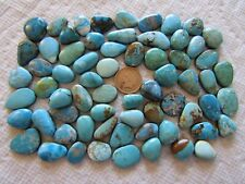 66 Mixed Turquoise Cabs 500 carats Blue Green Cabochons Wholesale Lot