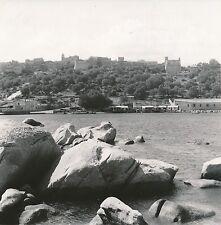 CORSE c. 1950 - Panorama de Porto Vecchio   - C104