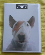 """Jimmy Choo"", ""Jimmy the Bull"", English Bull Terrier greetings cards. Brand new"