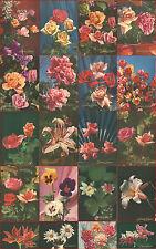 20 cartoline fiori anni 50 Sinceri auguri mai usate  postcards flowers