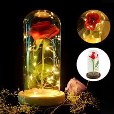 Beauty and The Beast Enchanted Rose Glass Dome LED Lighted Valentine Decor Gift