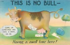 POSTCARD  COMIC  USA   This is no Bull....