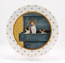 Vandor VAN7 Salad Plate 7.625 in. Kittens in Drawer Gold Paw Prints