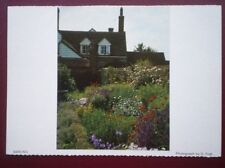 POSTCARD ESSEX BARLING - LOTS OF LOVELY FLOWERS IN A BACK GARDEN