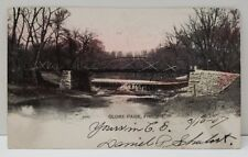 Globe Park Freeport Illinois Tinted Hand Colored Bridge Wagner Sons Postcard B10