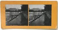 Nice il Paillon Italia Foto P39L9n14 Stereo Stereoview Vintage Analogica