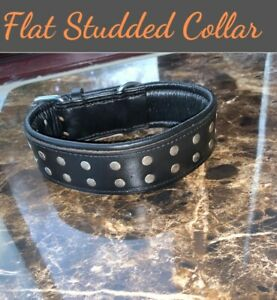 """Black 2"""" Wide Dog Collar Studded Leather Pet Collar For Large Breeds Heavy Duty"""