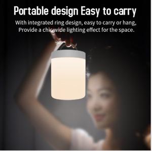 Portable Camping GARDEN PARTY Bedside Table Lamp RGB LED Color Changing USB - UK