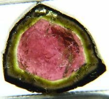 T3-12 Natural Top quality watermelon tourmaline,slice 7.50ct Brazil around 13mm