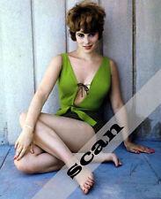 Jill St. John in Sexy swim suit James Bond Girl 8X10 Color Photo #1143