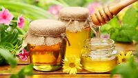 HONEY BEE type 1 Oil simmer candle SOAP making FRAGRANCE w dropper