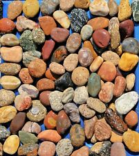 30 lbs Lot #3 Small Colorful River Rocks Water Feature Aquarium Landscape Pond