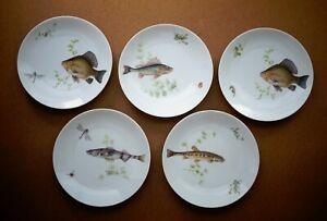 Bareuther Waldsassen Set of 5 Fish Plates Vintage Bavaria Germany