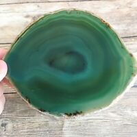 "Extra Large Green Agate Slice: Approx 5.25"" Long Crystal Stone Geode Quartz"