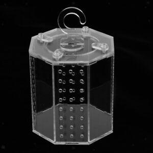 Spider Insect Reptile Tank Vivarium Cage Box Clear Acrylic Terrarium