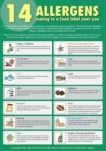14 Food Allergens Sign Poster Laminated x 1 Safer Food Better Business SFBB