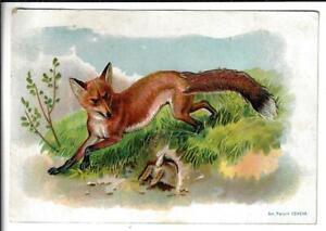 VINTAGE RICHMOND RANGES, FOX TRADE CARD TAIL MOVES, 6.25X4.5 INCHES, CLEAN CARD