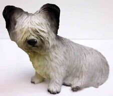Skye Terrier, Sitting, Conversation Concepts, Item Df45