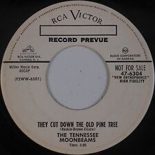 TENNESSEE MOONBEAMS: Cut Down Old Pine Tree RARE RCA Promo UNKNOWN 50s 45 Hear