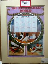 More details for the feathered world calendar 1911, mounted print chickens pheasants ducks
