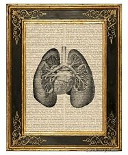 Lungs Art Print on Vintage Book Page Medical Anatomy Illustration Decor Gifts