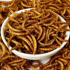 22LBS  Bulk Dried Mealworms for Birds, Chicken, Reptiles, Fish, Duck,Turkey Feed