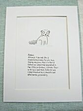 "Foldex Canadian Cat Exotic Fold Mounted Print 9x7"" Art Picture Cartoon Humour"