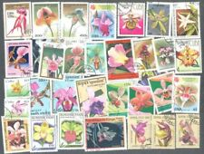 Orchids-- 100 all different stamp collection